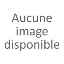 Echafaudage Acier AC 2m50 de long